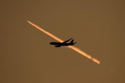 soku_34638.jpg :: 乗り物 交通 航空機 飛行機 旅客機 セントレア/キャセイB777