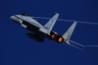 soku_34640.jpg :: 岐阜基地航空祭 乗り物 交通 航空機 飛行機 軍用機 戦闘機 F.15J