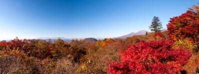 soku_34676.jpg :: 碓氷 浅間山 風景 自然 紅葉 赤い紅葉 パノラマ