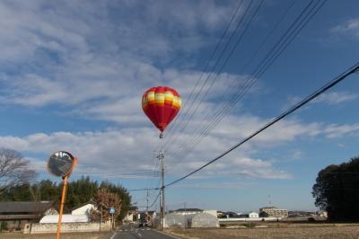 soku_34783.jpg :: 風景 自然 空 飛行機 熱気球