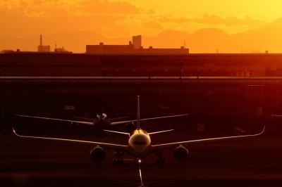 soku_34803.jpg :: A350/HND 乗り物 交通 航空機 飛行機 旅客機