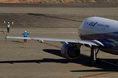 soku_34825.jpg :: ANA A321/HND 乗り物 交通 航空機 飛行機 旅客機