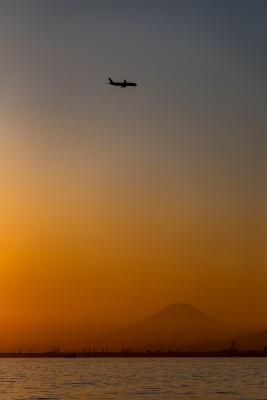 soku_34837.jpg :: 乗り物 交通 航空機 飛行機 旅客機 風景 自然 山 富士山