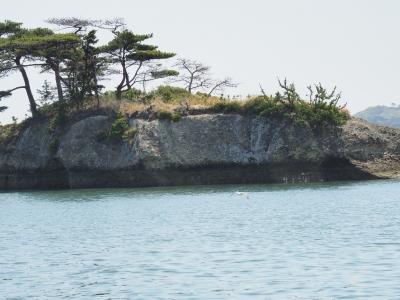 soku_35000.jpg :: 風景 自然 海 島