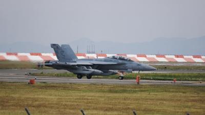 soku_35040.jpg :: 戦闘機 EA-18G