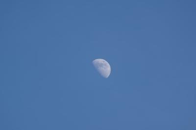 soku_35104.jpg :: 風景 自然 天体 月 三日月