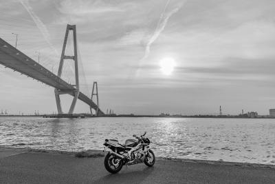 soku_35133.jpg :: CBR400RR M.O 名港トリトン バイク あんこ