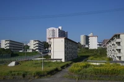 soku_35263.jpg :: 中華40mm F2.8 資料 比較 サンプル