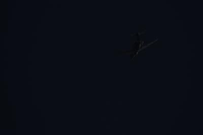 soku_35444.jpg :: 乗り物 交通 航空機 飛行機 旅客機