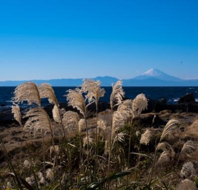 soku_35469.jpg :: 秋、富士、海