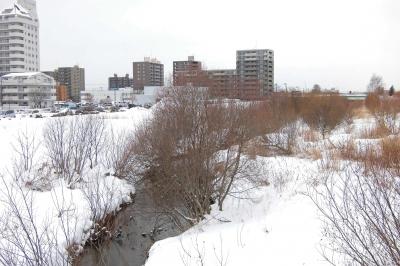 soku_35558.jpg :: 冬の北海道 大胆 風景写真家 プロ 作例 ケント白石