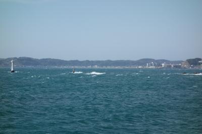 soku_35742.jpg :: 運動 スポーツ ウォータースポーツ サーフィン ウインドサーフィン