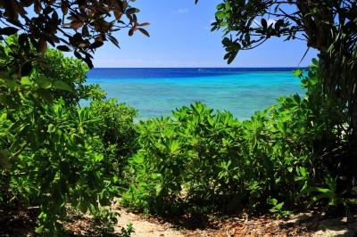 soku_35762.jpg :: 風景 自然 海 海岸