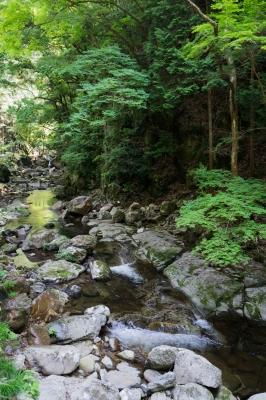 soku_36069.jpg :: 風景 自然 川 渓流