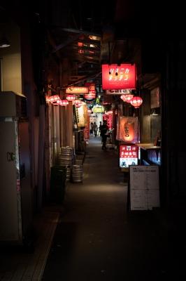 soku_36271.jpg :: 吉祥寺 (^-^) 風景 街並み 都市の風景 路地裏 飲み屋街
