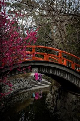 soku_36407.jpg :: 下鴨神社 橋 和服
