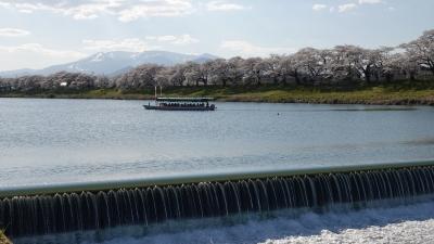 soku_36470.jpg :: 宮城県 一目千本桜