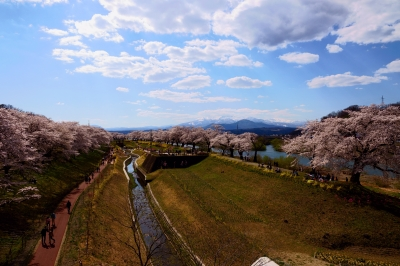 soku_36473.jpg :: 宮城県 一目千本桜