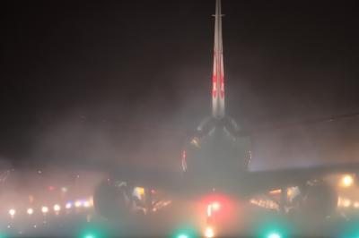 soku_36686.jpg :: デジカメ板 飛行機写真スレ〓第91便〓 by GAJ