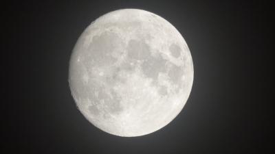 soku_36730.jpg :: 風景 自然 天体 月 満月 中秋の名月